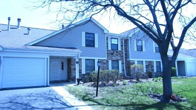 Schaumburg Condo/Townhouse For Sale: 217 Arrowwood Court #B2