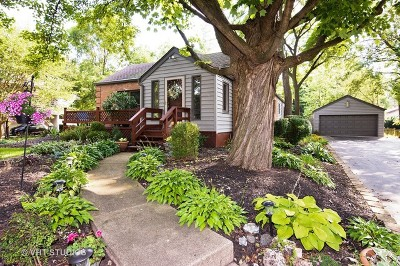 Prospect Heights Single Family Home For Sale: 507 North Elmhurst Road