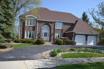 Palos Park Single Family Home For Sale: 13011 South Ridgewood Drive