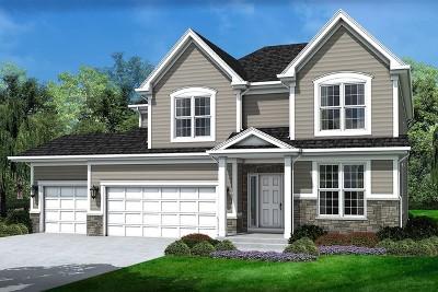 Glen Ellyn Single Family Home For Sale: 22w165 First Street