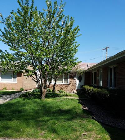 Hazel Crest Multi Family Home Price Change: 16939 Page Avenue