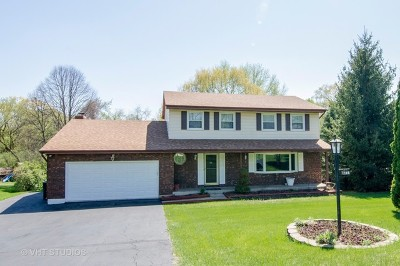 Algonquin Single Family Home For Sale: 1305 Zange Drive