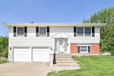 Glen Ellyn Single Family Home For Sale: 23w063 Blenheim Court