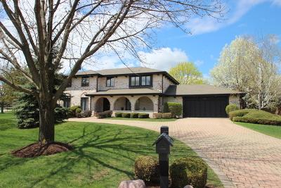 Burr Ridge Single Family Home For Sale: 1510 Tomlin Drive