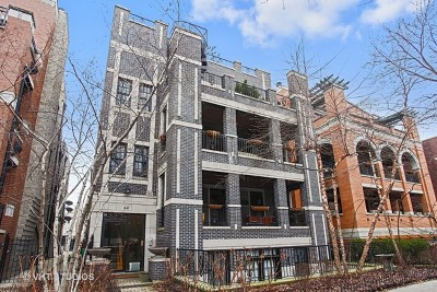 Condo/Townhouse Price Change: 841 West Bradley Place #3F