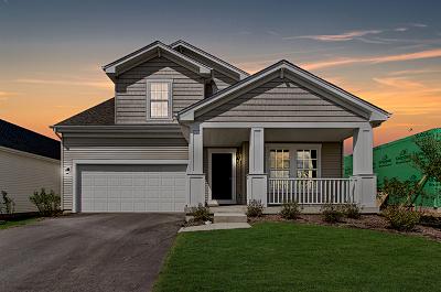 Elburn Single Family Home For Sale: 676 Elizabeth Street