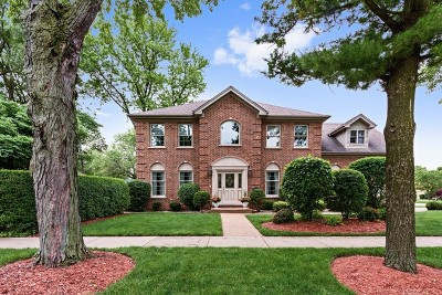Arlington Heights Single Family Home For Sale: 1115 West Saint James Street