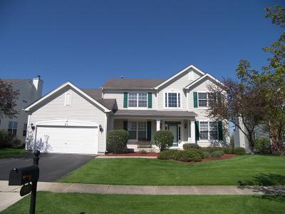 South Elgin Single Family Home For Sale: 21 West Ellington Court