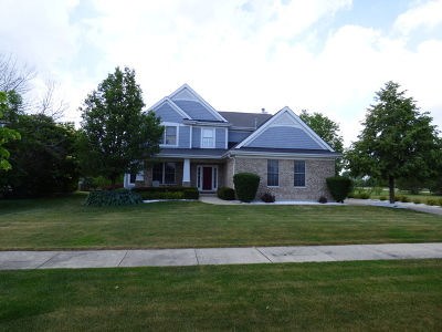 Frankfort Single Family Home For Sale: 21366 Breton Road