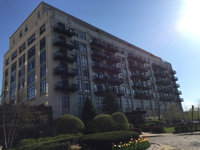 Chicago Condo/Townhouse Re-Activated: 1524 South Sangamon Street #609