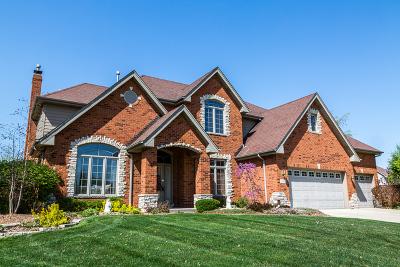 Frankfort Single Family Home For Sale: 21882 Blue Bird Lane