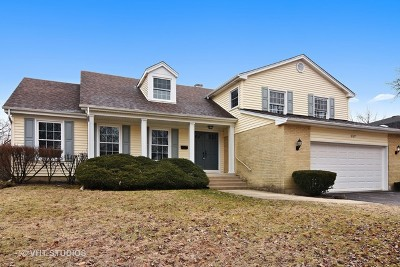 Palatine Single Family Home For Sale: 657 South Mallard Drive