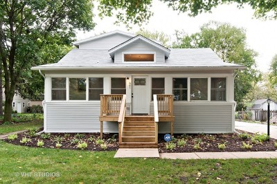 Glen Ellyn Single Family Home For Sale: 641 Western Avenue