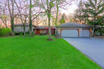Willowbrook Single Family Home For Sale: 9s630 Lorraine Drive