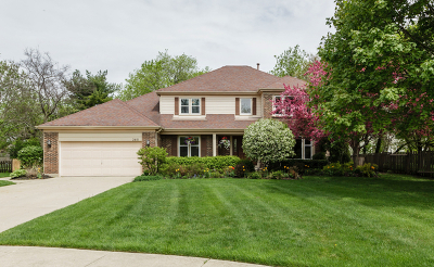 Buffalo Grove Single Family Home For Sale: 2851 Whispering Oaks Drive