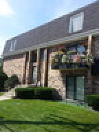 Chicago Ridge  Condo/Townhouse For Sale: 9836 Sayre Avenue #2