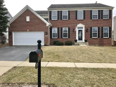 South Elgin Single Family Home For Sale: 370 Courtland Drive