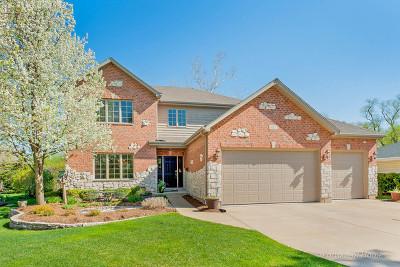 Wheaton Single Family Home For Sale: 917 Wakeman Avenue