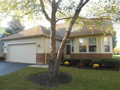 Plainfield Single Family Home For Sale: 21008 West Redberry Court
