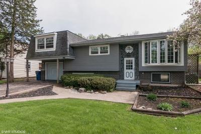 Addison Single Family Home For Sale: 913 East Gladys Avenue