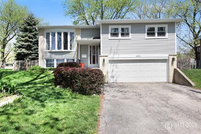 Woodridge Single Family Home For Sale: 2224 Apache Lane