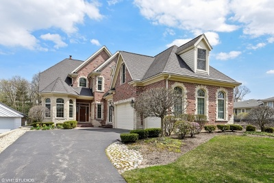 Clarendon Hills Single Family Home For Sale: 235 Middaugh Road