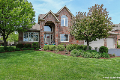 Plainfield Single Family Home For Sale: 12834 Shenandoah Trail