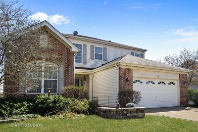 Streamwood Single Family Home For Sale: 5 Buckskin Lane