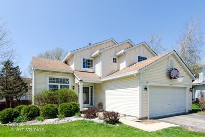 Lake In The Hills Single Family Home For Sale: 1179 Moonstone Run