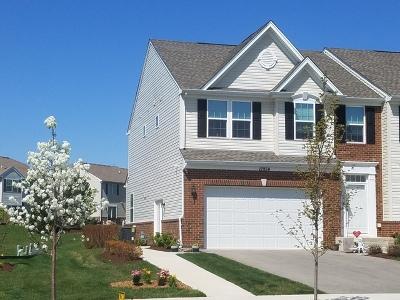 Plainfield Condo/Townhouse Price Change: 12934 White Pine Way