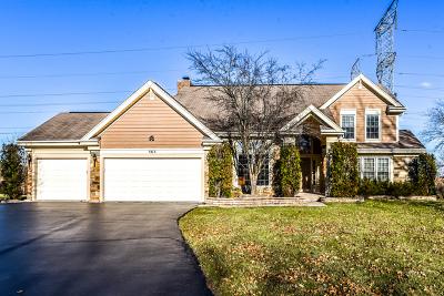 Buffalo Grove Single Family Home For Sale: 565 Coventry Lane