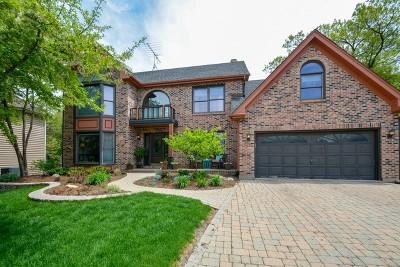 Winfield Single Family Home For Sale: 0n061 Cedar Court