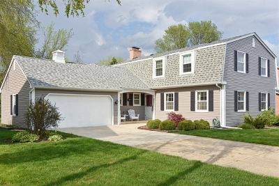 Palatine Single Family Home For Sale: 428 East Carpenter Drive