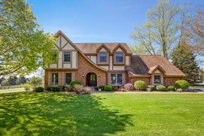 Kane County Single Family Home For Sale: 41w065 Palomino Drive