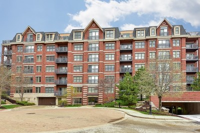 Wheaton Condo/Townhouse For Sale: 255 East Liberty Drive #408