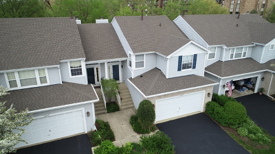Willowbrook Condo/Townhouse For Sale: 6613 Snug Harbor Drive #6613