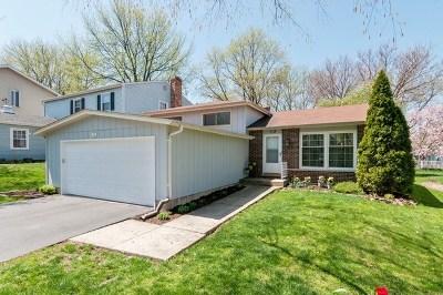 Glen Ellyn Single Family Home For Sale: 112 Kenilworth Avenue