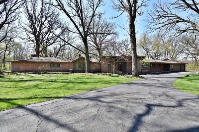 Kane County Single Family Home For Sale: 5n440 Curling Pond Road