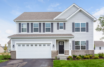 Plainfield Single Family Home For Sale: 16929 South Callie Drive