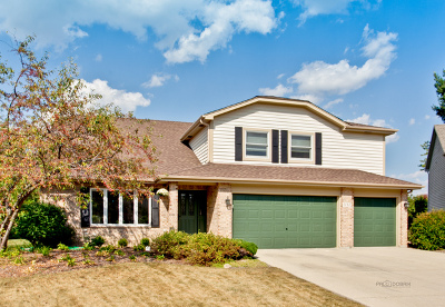 Crystal Lake Single Family Home For Sale: 1112 Palmer Court