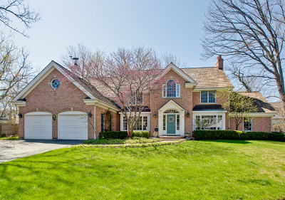 Lake Forest Single Family Home For Sale: 319 Ravine Park Drive