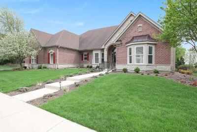 Geneva Single Family Home For Sale: 39w505 South Mathewson Lane
