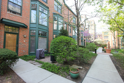 Oak Park Condo/Townhouse For Sale: 101 North Euclid Avenue #18