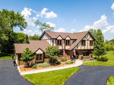 Palos Park Single Family Home For Sale: 60 Romiga Lane