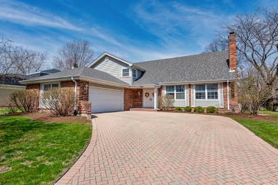 Glen Ellyn Single Family Home For Sale: 506 Stafford Lane