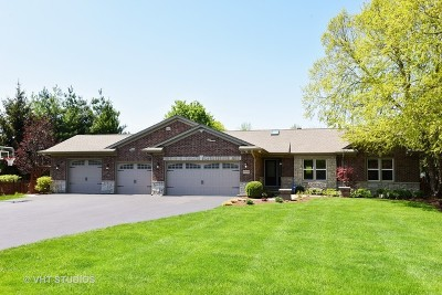 St. Charles Single Family Home For Sale: 6n020 Old Homestead Road