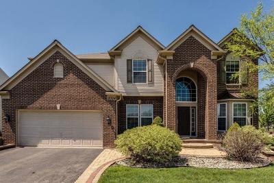 Plainfield Single Family Home For Sale: 12324 Blue Iris Lane