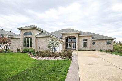 Mokena Single Family Home For Sale: 21100 Prestancia Drive