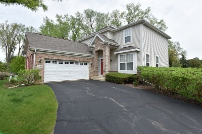Lake Zurich Single Family Home For Sale: 314 Seaton Court