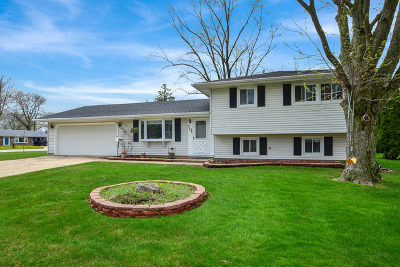 Schaumburg Single Family Home For Sale: 701 West Weathersfield Way